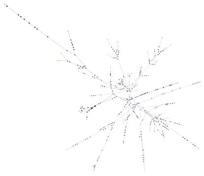 network viewer screenshot